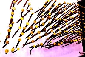 Light-Headed Nails