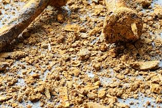 Rust Flakes